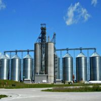 How much grain is in your silo